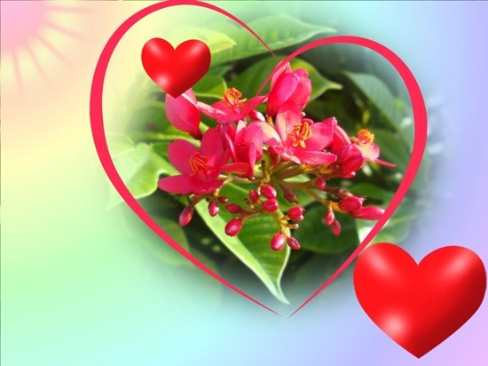 Вечная Любовь-вечно прибывай!