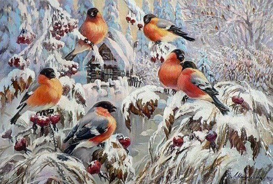январь птички и снег