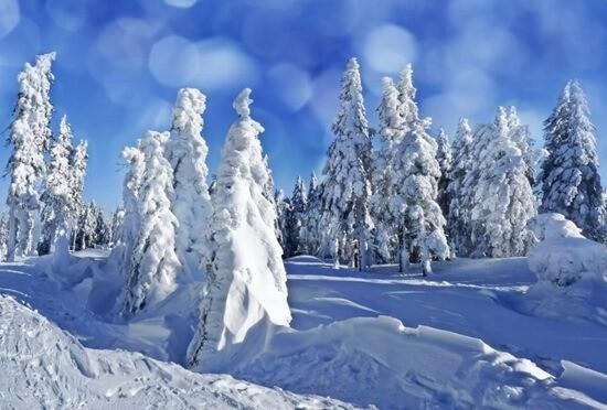 Мартовский снег.