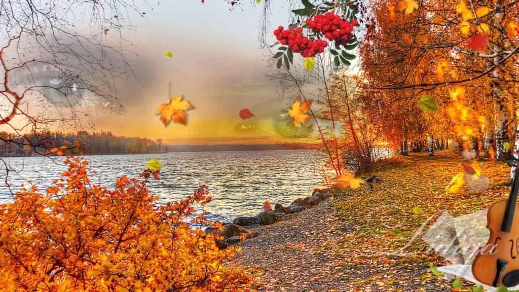 Жизни осень